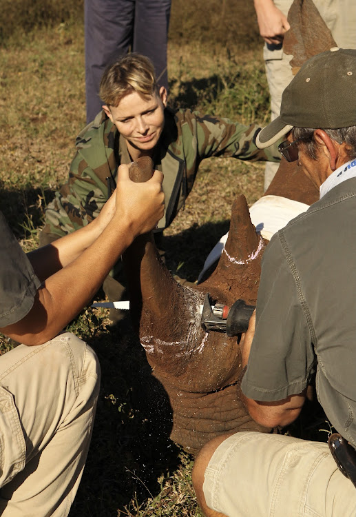 '[The rhino poaching] crisis has stolen almost 10,000 African rhinos from our beautiful earth,' said Princess Charlene of Monaco.