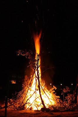 Fire di wolfdog