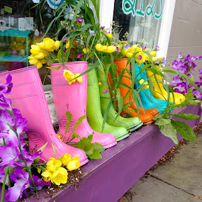 Boot Garden by Donovan Twaddle - Artistic Objects Still Life ( shop, boot, flora, colorful, boot garden, northeast, minnesota, rain boots, window, color, minneapolis, boutique, flowers, garden, boots, floral, sidewalk )