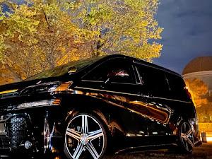ヴェルファイア  AGH30W  Z″Gエディション  7人乗のカスタム事例画像 ハマオさんの2020年11月13日22:05の投稿