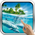 Magic Touch: Dolphins apk