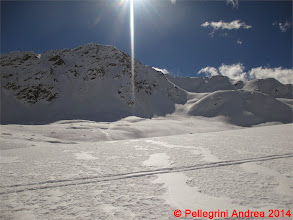 Photo: IMG_7050 in paradiso e adesso al sole, Cima Boai