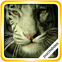 Jigsaw Puzzles: Tigers icon