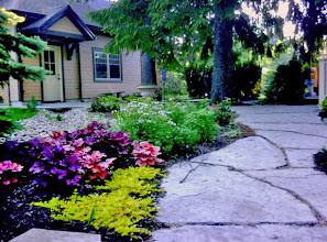 Photo: A rain garden, perennial plantings and mega-flag. Heuchera and Golden Pennycress highlight each other.