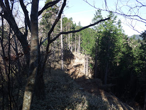 結局林道沿いに