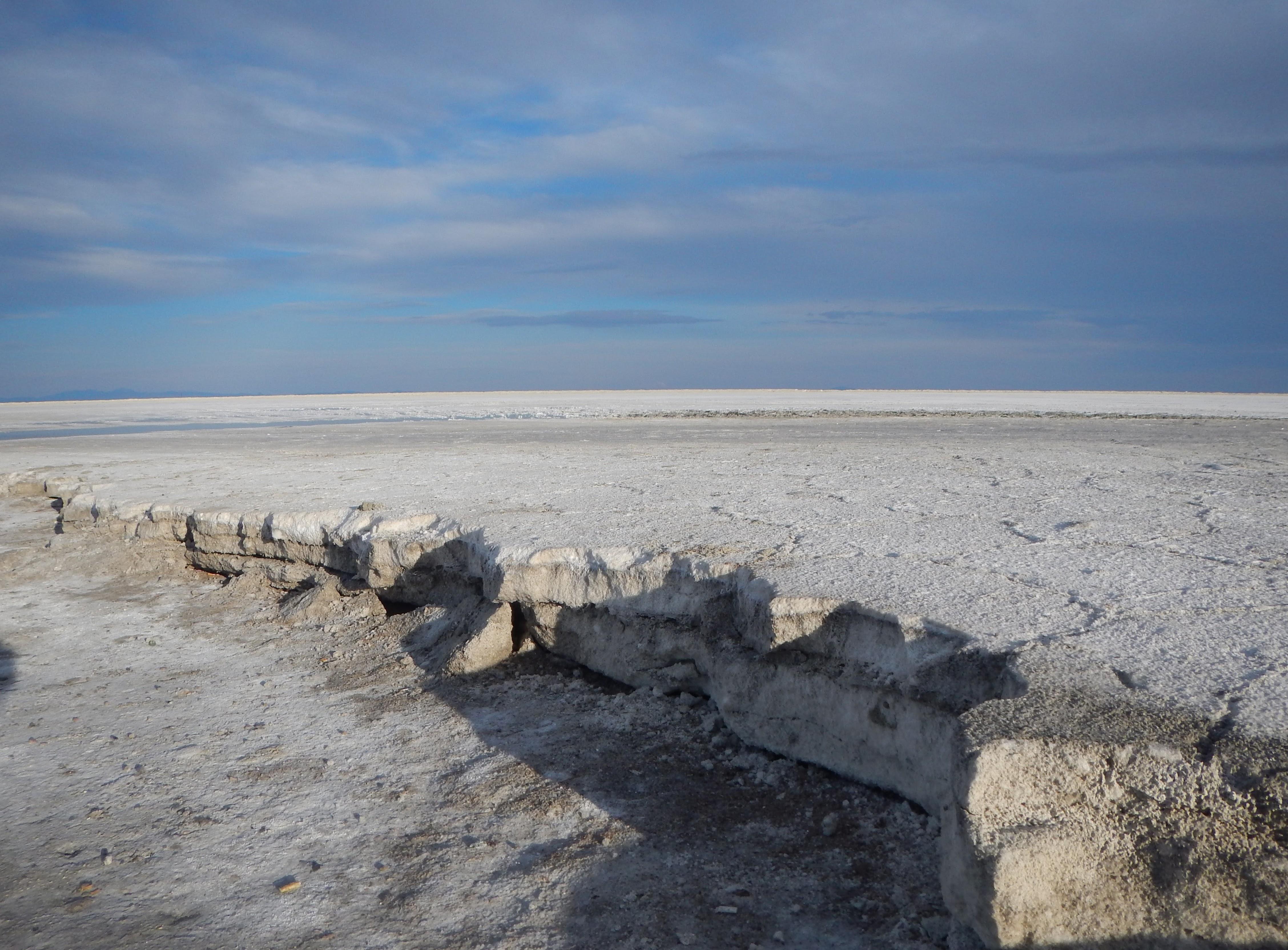 Photo: A ridge of salt.