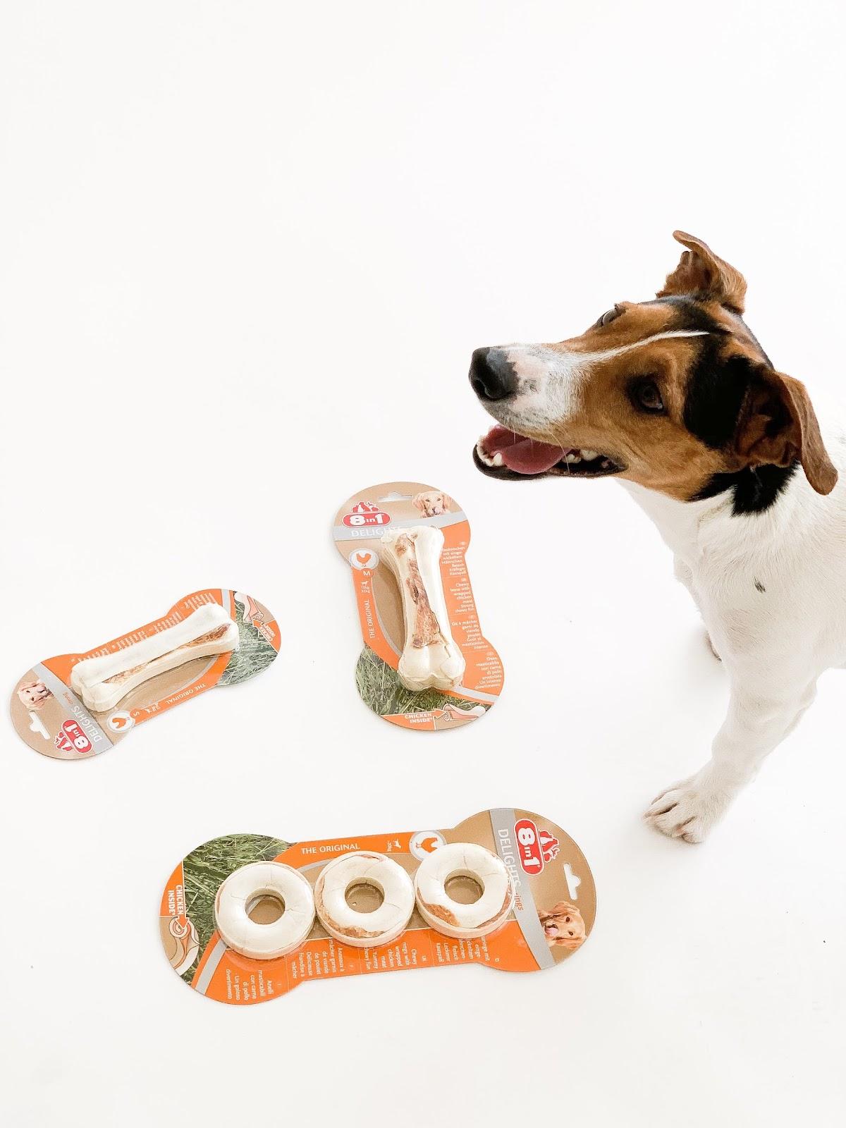 Какие косточки для щенков лучше: натуральные или искусственные