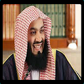 Mufti Ismail Menk videos icon