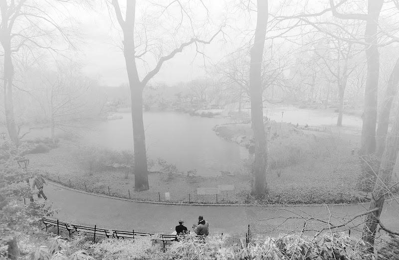 Central Park di Montevecchi
