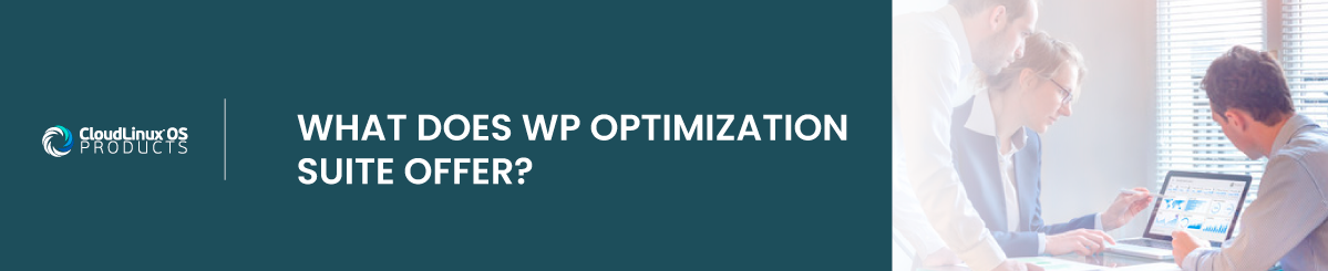 what does wp optimization suite offer