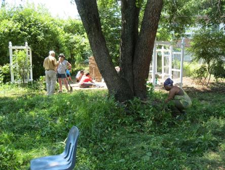 NEHS school garden 1.png