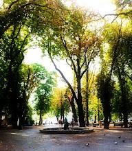 Photo: Park around Kalemegdan  Citadel.  Belgrade.