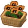 オレンジのパンジー(家具)