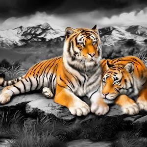 Tiger Cuddles.jpg