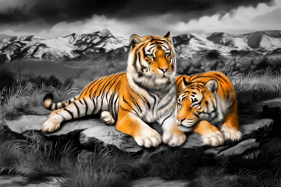 Tiger Cuddles by Shannon Rogers - Painting All Painting ( mountains, shannon rogers, tiger, award winning, art, artist, tigers )