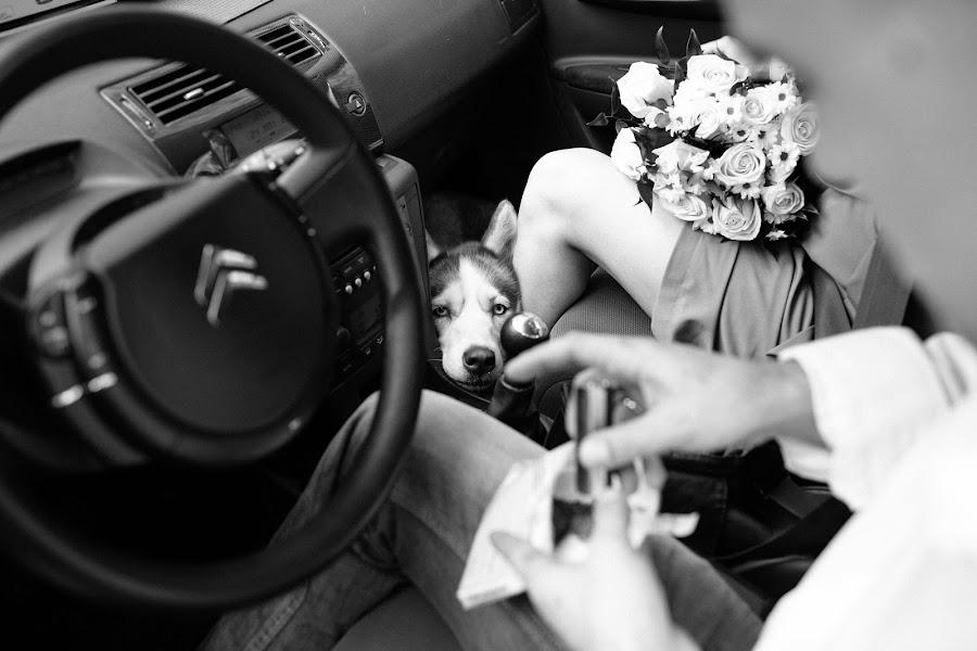 Свадебный фотограф Алексей Смирнов (AlekseySmirnov). Фотография от 13.06.2014