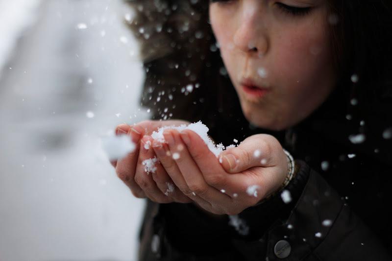 Soffio d'inverno di elegnana