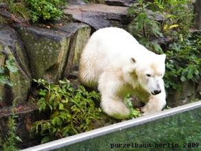 Photo: Gianna macht den Abflug zum naechsten Bad ;-)