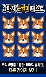 강아지 눈썰미 테스트 - náhled