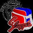 久保田スラッガー オーダーバッグT333シミュレーター