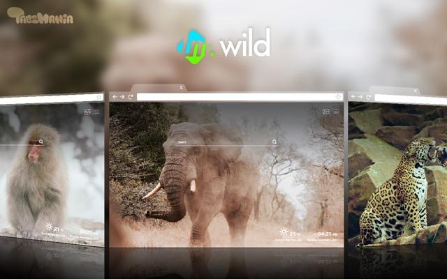 Wild Animals HD Wallpapers New Tab Theme