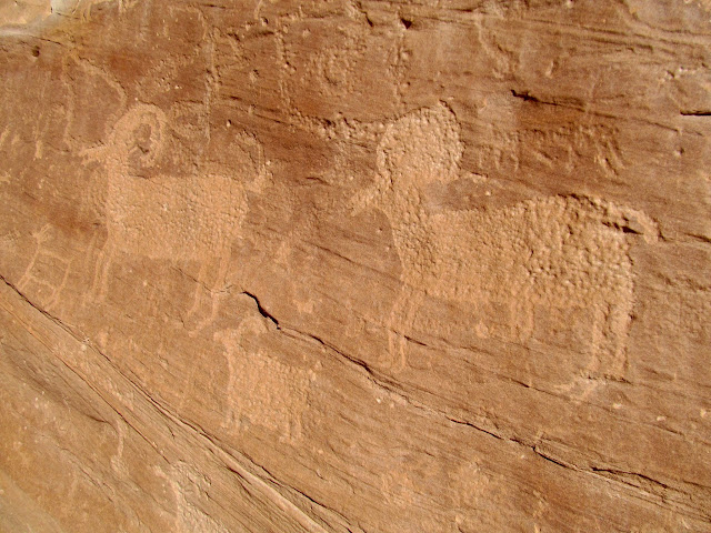 Bighorn sheep and other petroglyphs