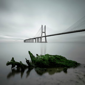 tales of mystery and imagination by António Leão de Sousa - Buildings & Architecture Bridges & Suspended Structures ( ponte vasco da gama,  )