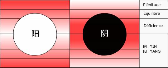 Équilibre Yin Yang