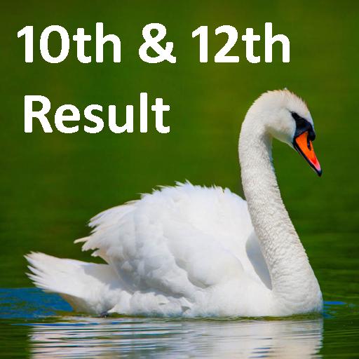10th 12th Board Results 2017