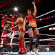 Smackdown WWE Pro Updates (game)