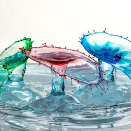 Triple Double-Drop Single Shot by Steve Kazemir - Abstract Water Drops & Splashes ( water, macro, red, splash, blue, drop, green, triple, rgb, double )