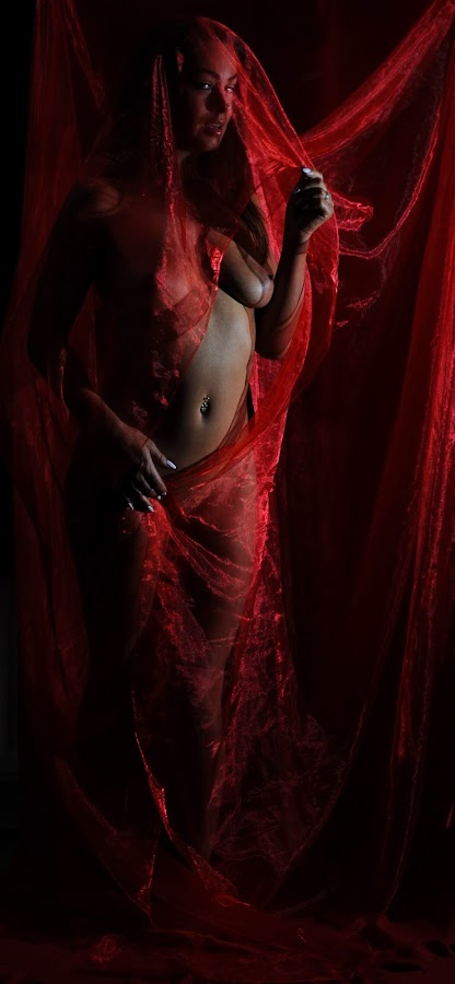 Scarlet Chrysalid by DJ Cockburn - Nudes & Boudoir Artistic Nude ( red, off camera flash, woman, white, art nude, home shoot, caucasian, topless, sheer, model )
