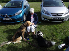 Photo: Judy with Gretl Golden X and Galu Border Collie
