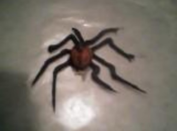 The Making Of A Halloween Spider Recipe