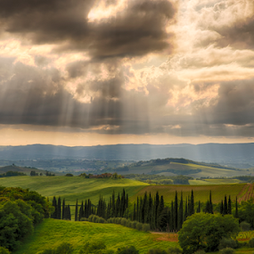 by Maurizio Martini - Landscapes Cloud Formations ( countryside, vineyard, seasonal, italian, tuscany, podere, viticulture, farmland, house, landscape, spring, farm, hillside, typical, tree, nature, autumn, cypress, pastoral, italy, hill, grass, green, mysterious, winegrowing, siena, rural, country, field, fog, dust, fall, meadow, cloud, scenery, view, tuscan, medieval, , #GARYFONGDRAMATICLIGHT, #WTFBOBDAVIS )