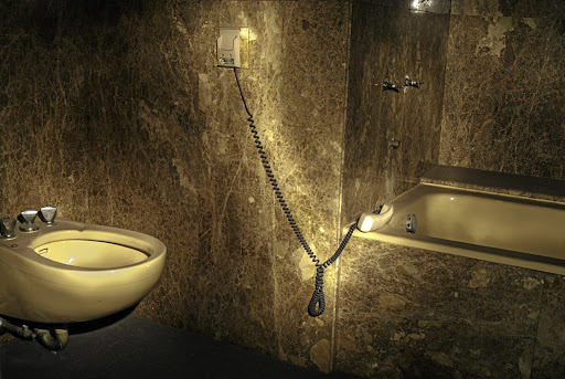 An image of the bathroom (present day) at the abandoned Carlton Hotel