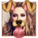 divertiment face-colagem fotos icon