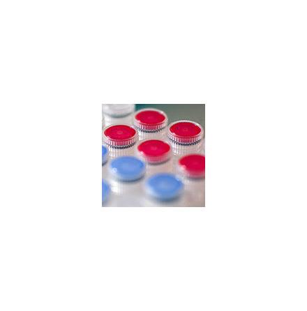 Cod Uracil-DNA Glycosylase (Cod UNG)