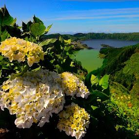 A Magia Da Ilha De São Miguel Açores  by Angela Silva - Landscapes Mountains & Hills ( ângela silva )