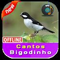 Cantos Bigodinho icon
