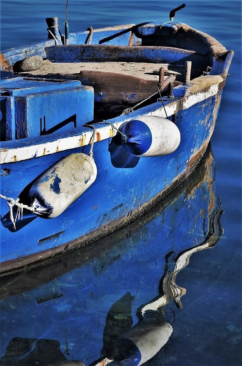 Blue in blue di ely50