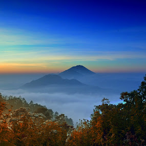 sunrise at sukawana by Agus Mahaputra - Landscapes Mountains & Hills ( mountains, sky, grass, sunrise, misty )
