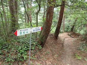 佐倉神社分岐(右に)