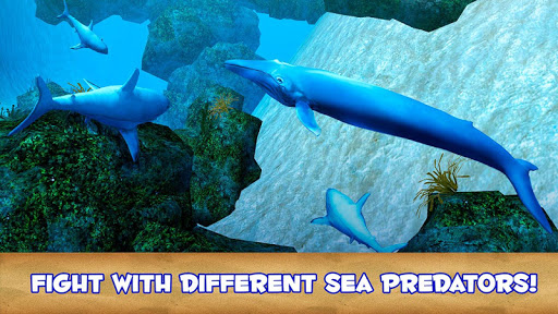 Blue Whale Simulator 3D  screenshots EasyGameCheats.pro 2