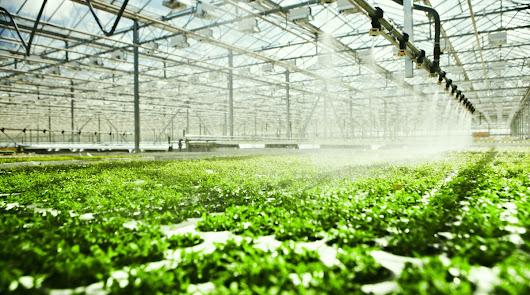 La Junta apuesta por fuentes alternativas para mejorar el uso del agua agrícola