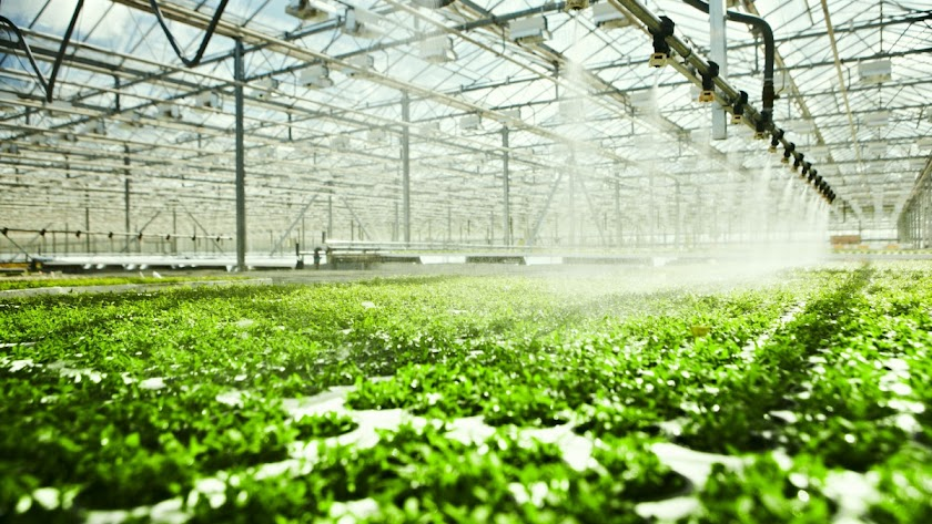 La eficiencia en el uso del agua es especialmente importante en el Sureste de la Península Ibérica.