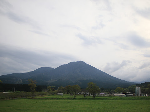 宮崎交通「はまゆう号」 ・921 車窓