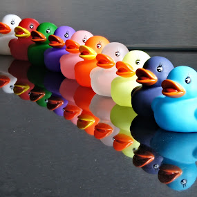 Rubber ducks by Anita Berghoef - Artistic Objects Toys ( red, blue, green, white, bath, artistic, pink, artistic object, yellow, artistic objects, rubber ducks,  )