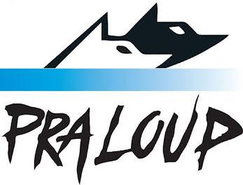 locaux professionels à Pra loup (04)