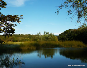 Photo: Another pond at Rancho Primavera, near Tuito, Jalisco